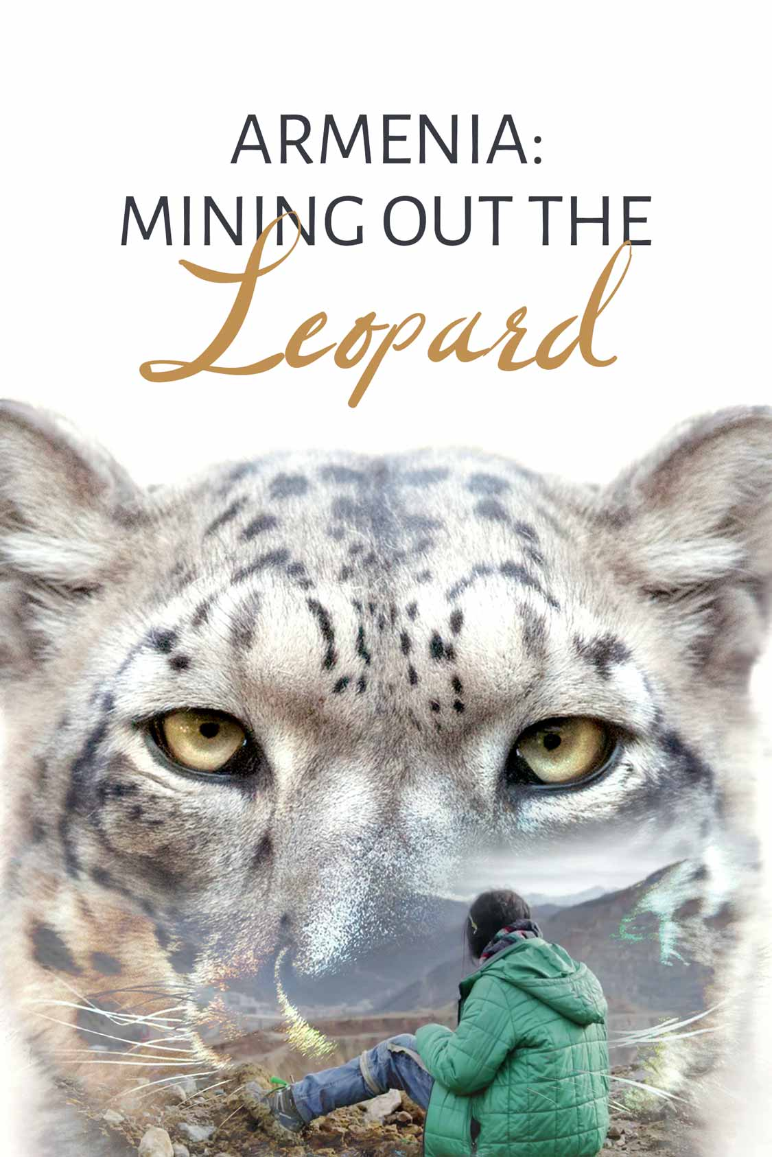 Armenia: Mining Out the Leopard
