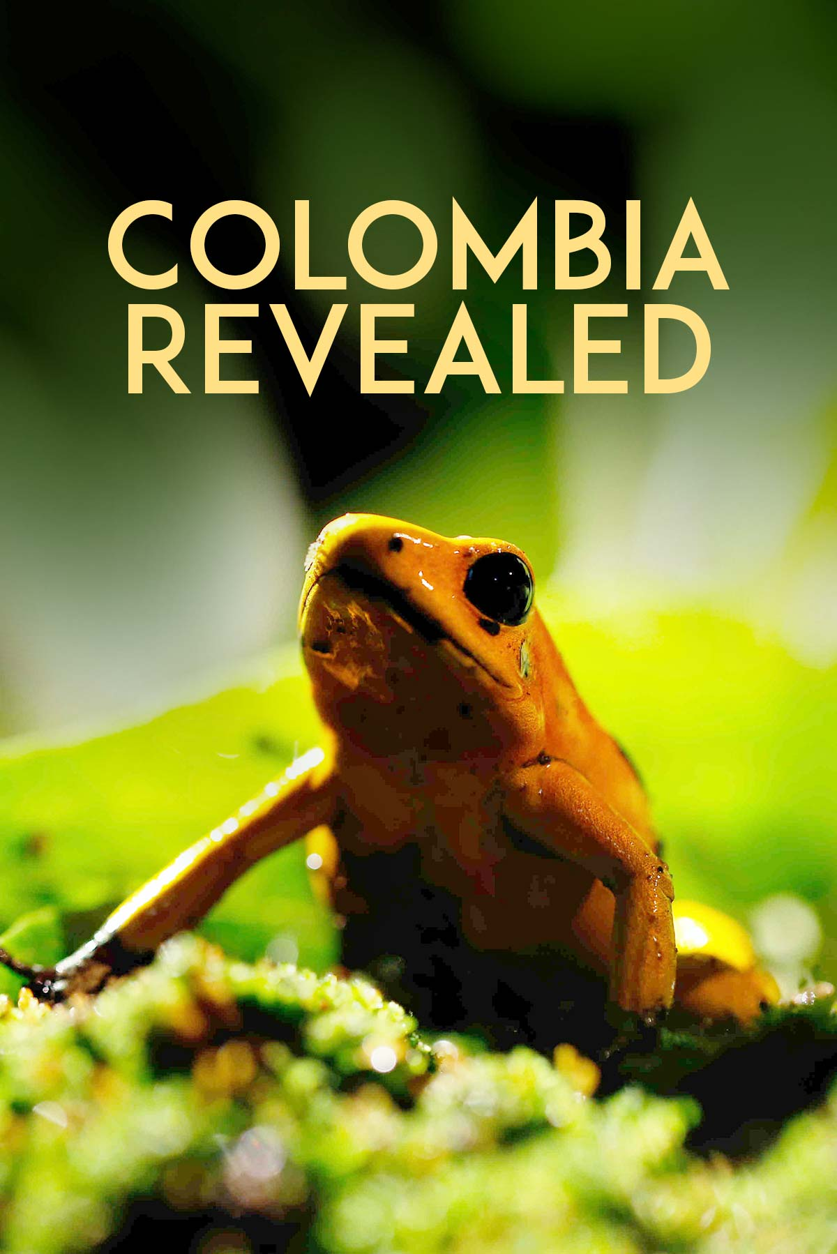 Colombia Revealed