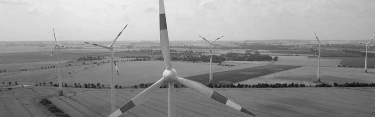 Bird's Eye: Wind Power the Energy of the Future