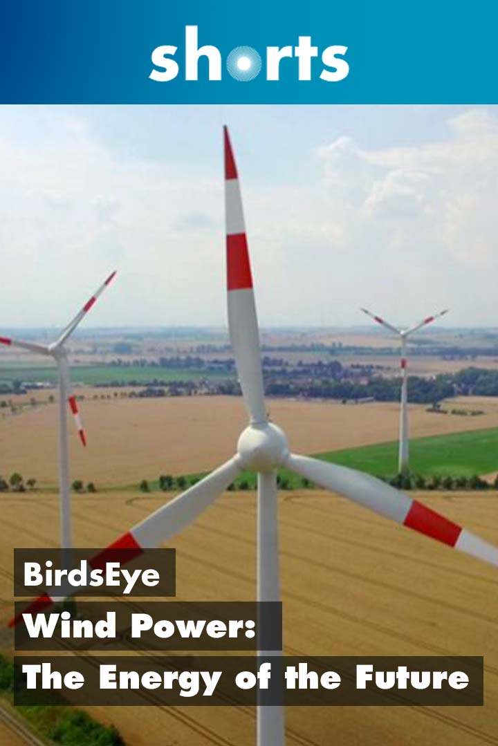 Bird's Eye: Wind Power the Energy of the Future