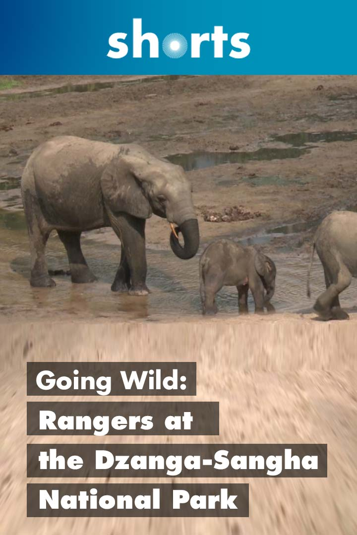 Going Wild: Central African Republic Ranger