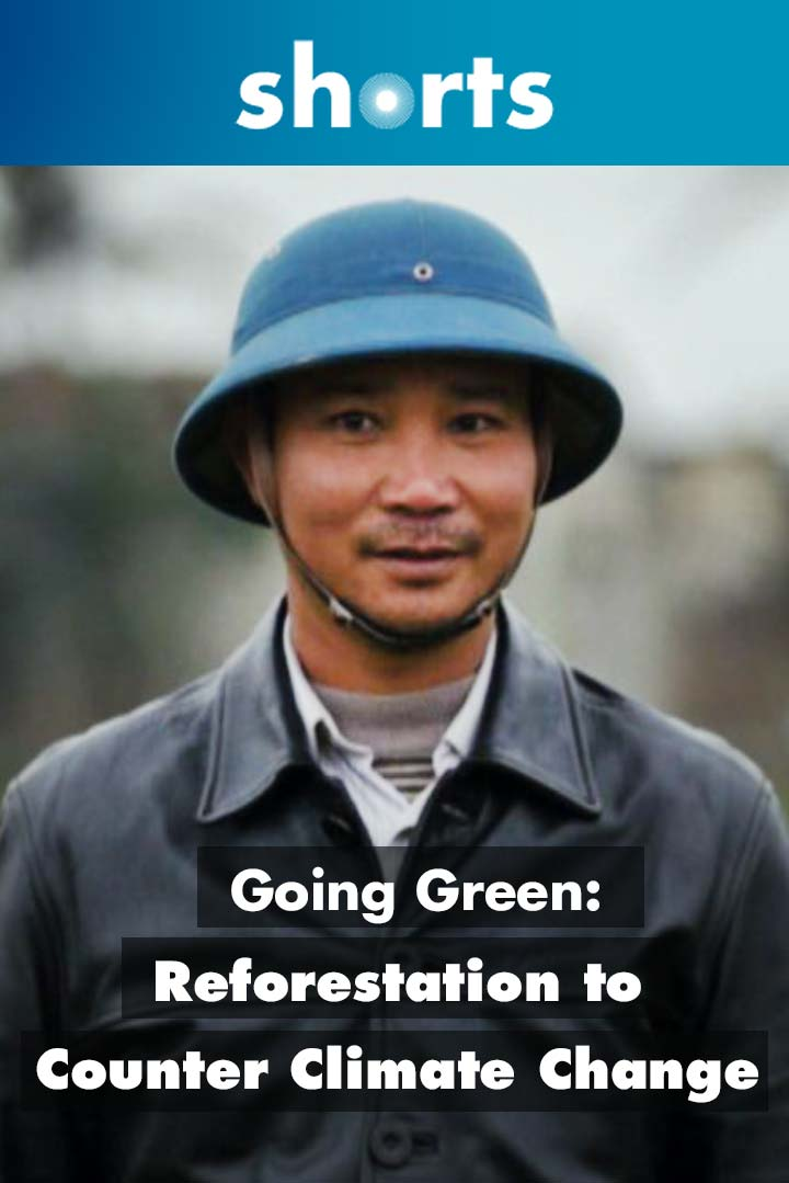 Going Green: Vietnam reforestation to counter climate change