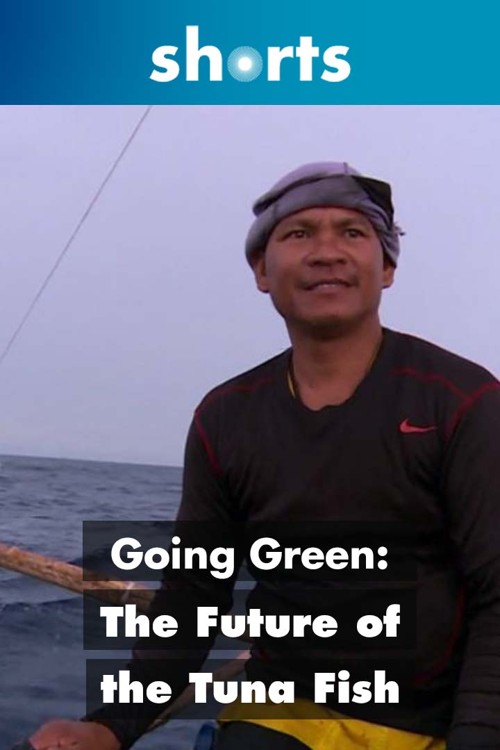 Going Green: Philippines the future of the tuna fish