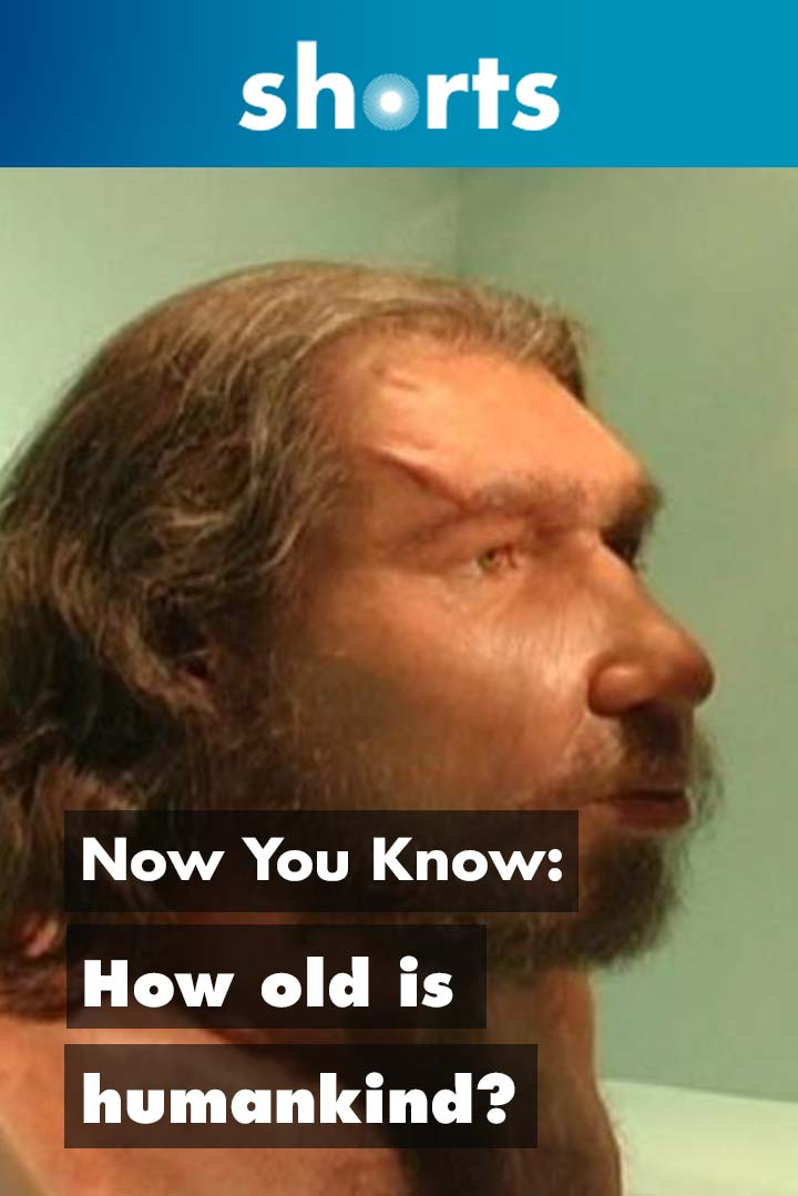 Now You Know: How old is humankind?