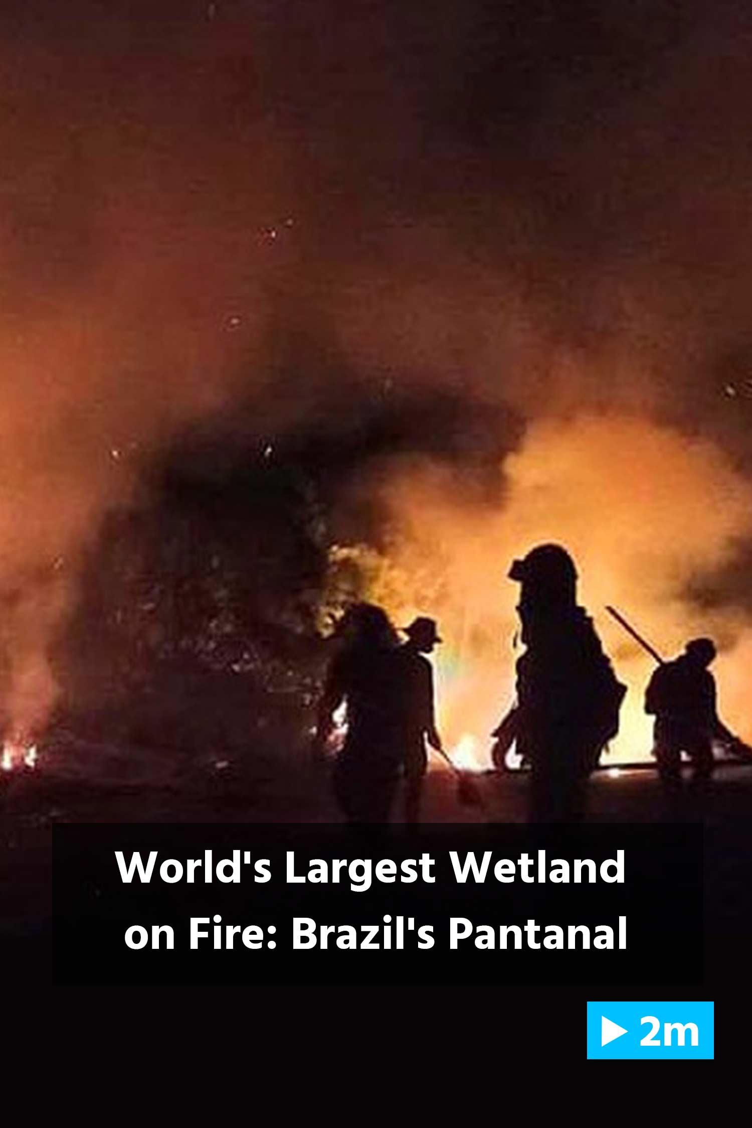 Reuter's Report: World's largest wetland on fire: Brazil's Pantanal